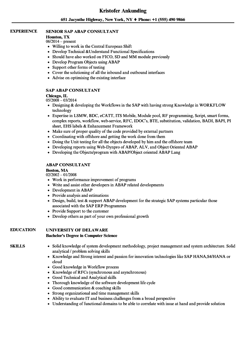 Abap Consultant Resume Samples | Velvet Jobs