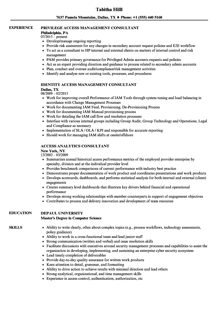 Access Consultant Resume Samples | Velvet Jobs