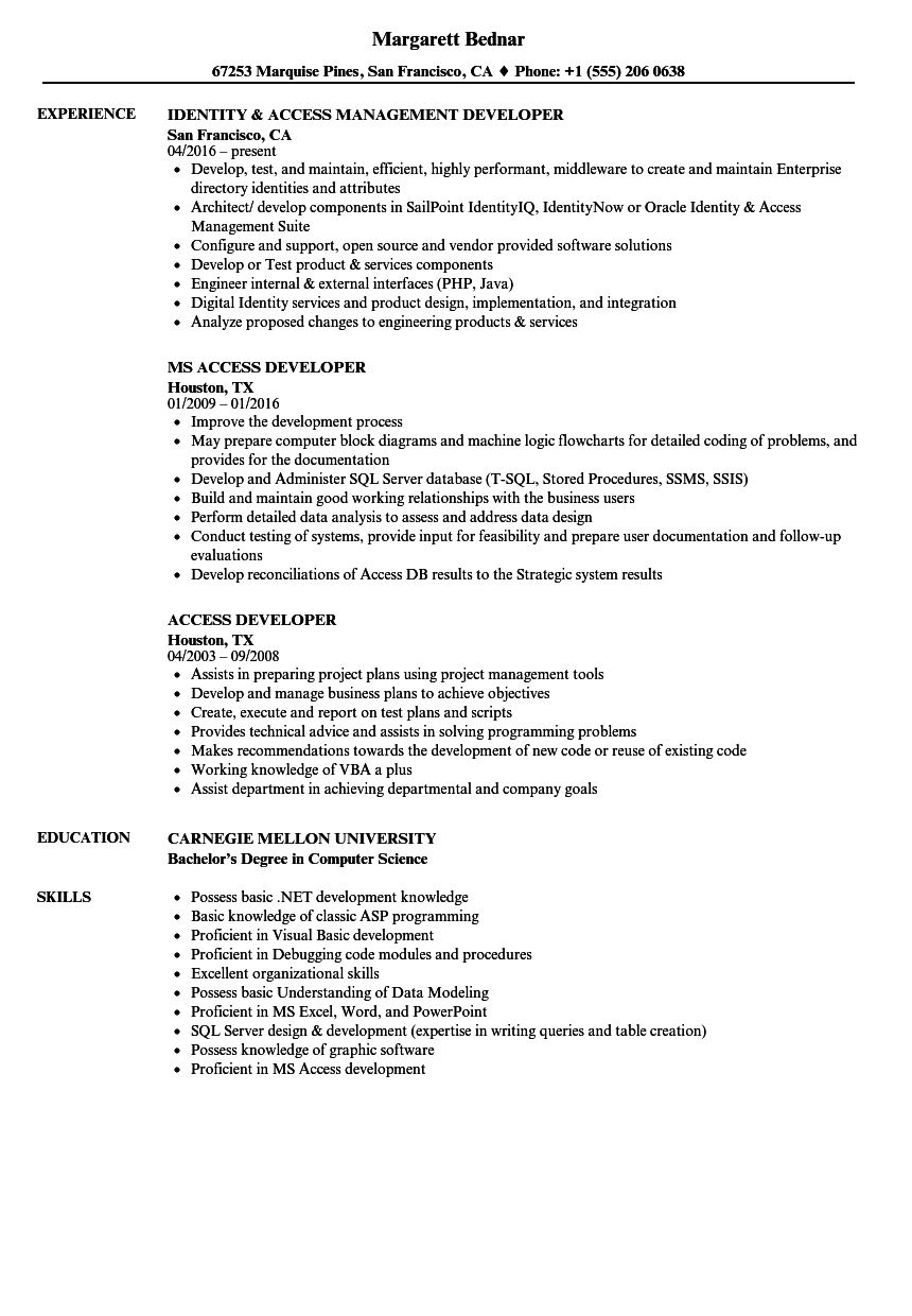 access developer resume samples