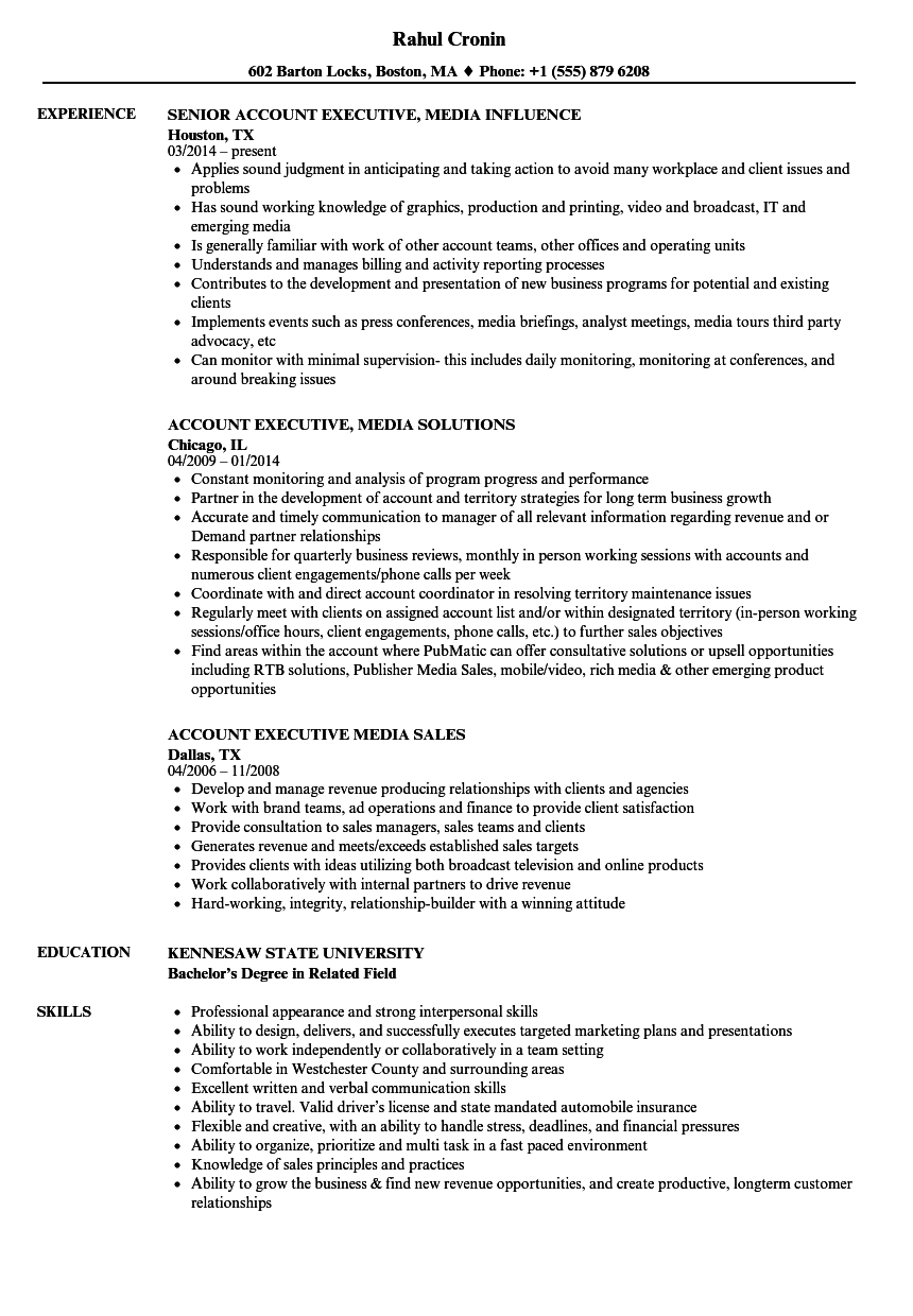 account executive  media resume samples