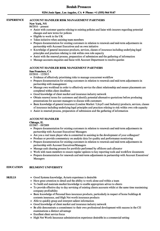 Account Handler Resume Samples   Velvet Jobs