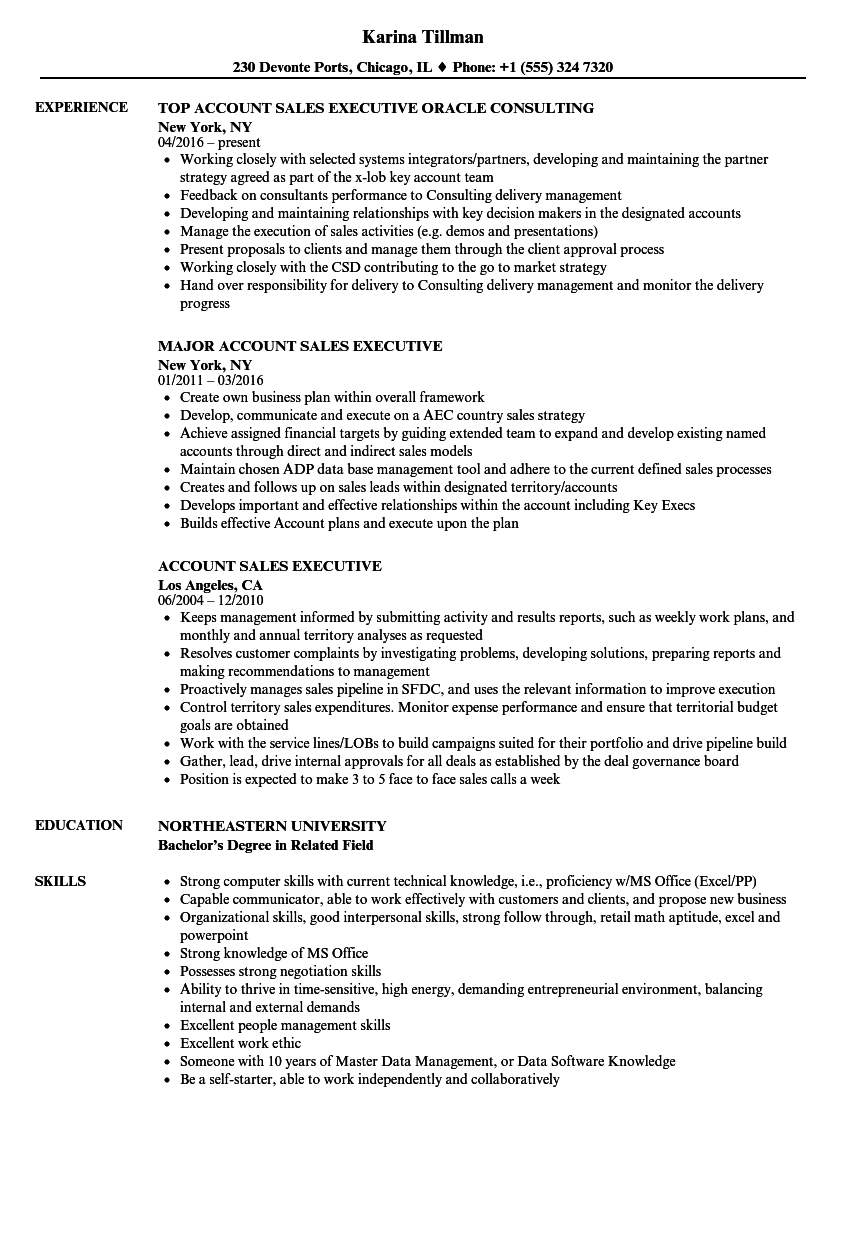 download account sales executive resume sample as image file - Resume Format For Sales Executive