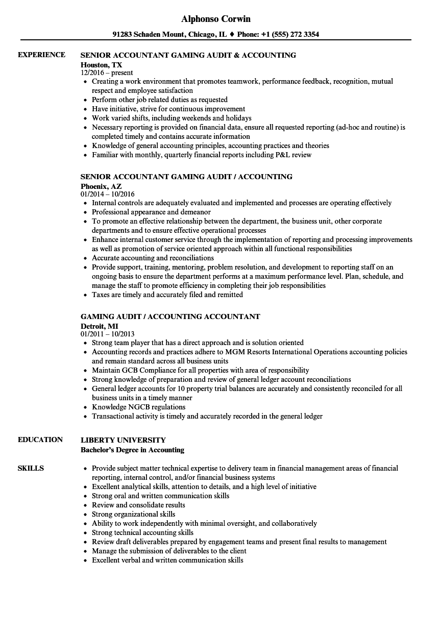 Accounting & Audit Resume Samples | Velvet Jobs