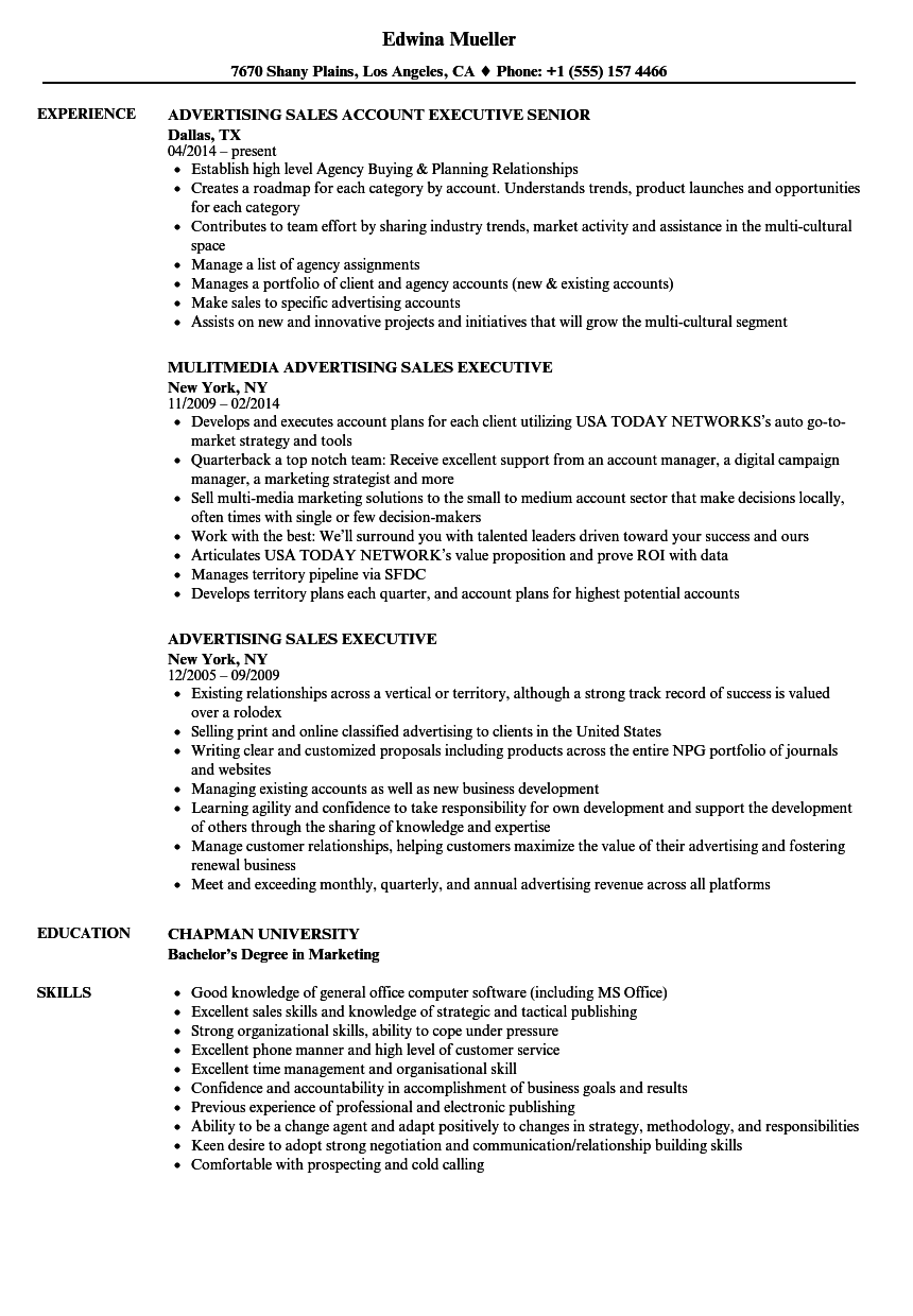 Download Advertising Sales Executive Resume Sample As Image File  Advertising Resume