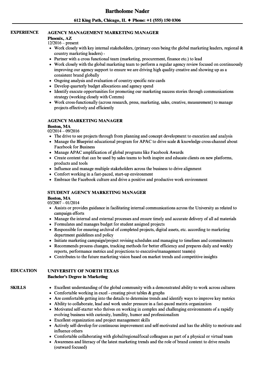 agency marketing manager resume samples