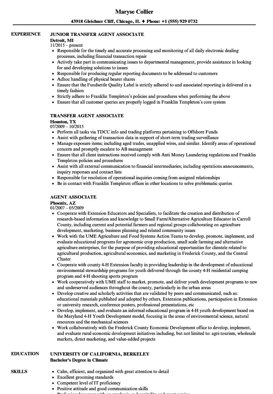 agent associate resume samples