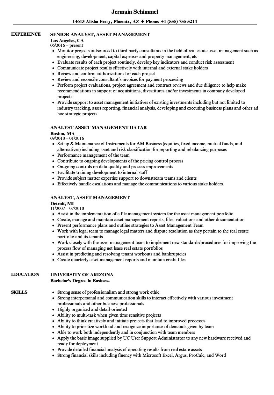 analyst asset resume samples velvet jobs