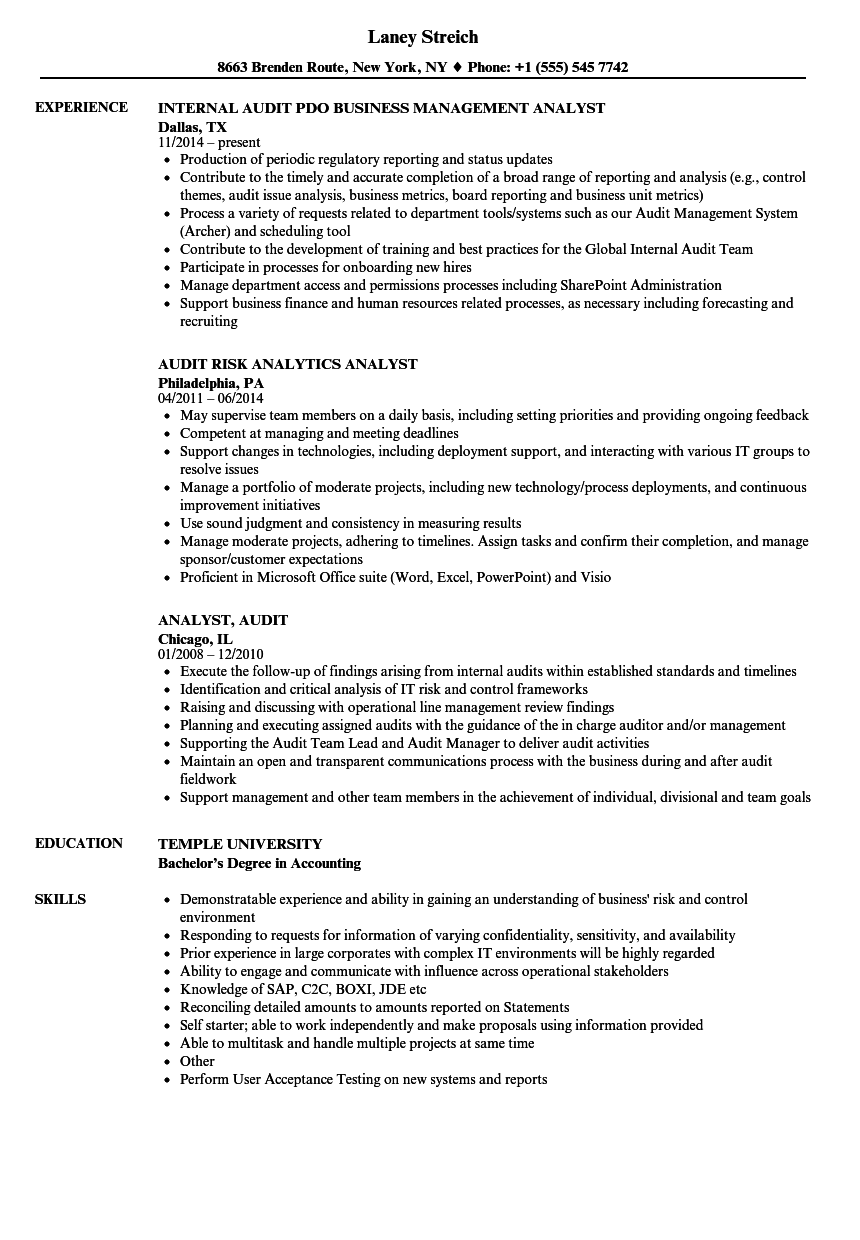 analyst  audit resume samples