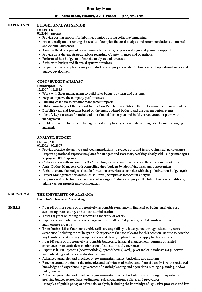 analyst  budget resume samples