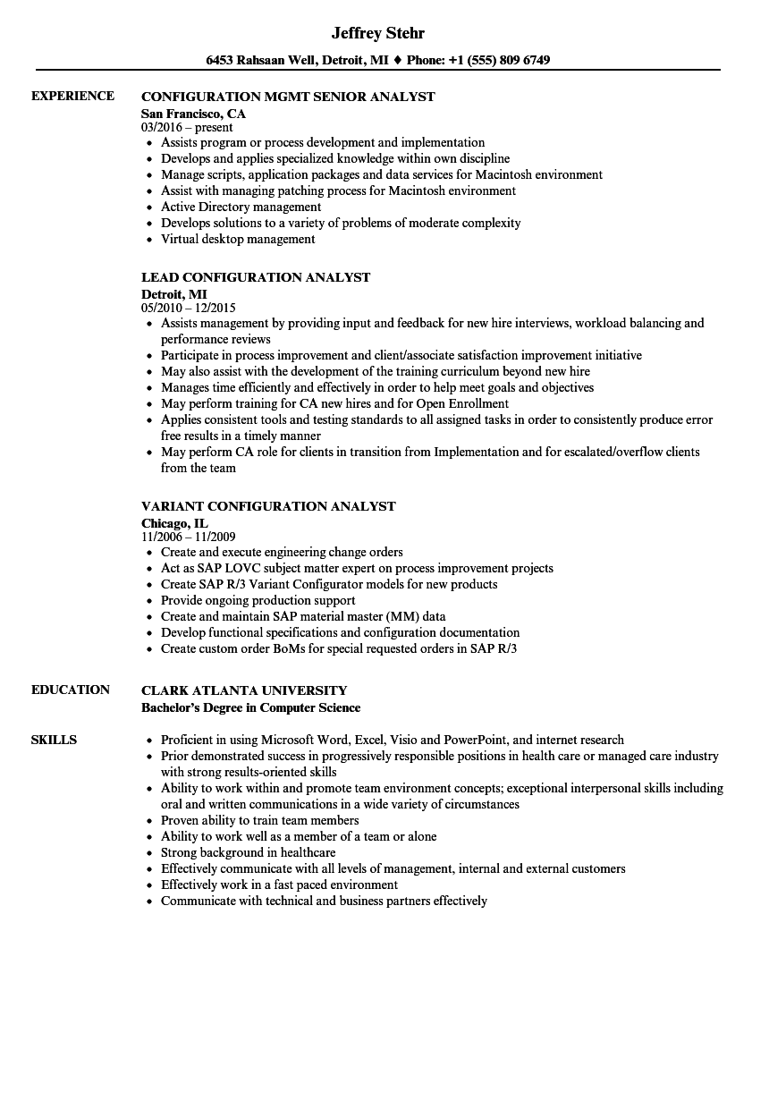 Download Analyst Configuration Resume Sample As Image File  Management And Program Analyst Resume