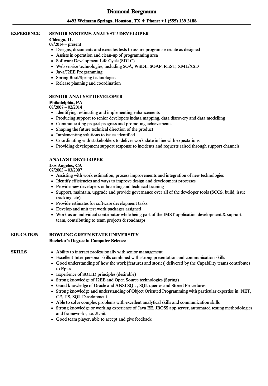 Analyst Developer Resume Samples | Velvet Jobs