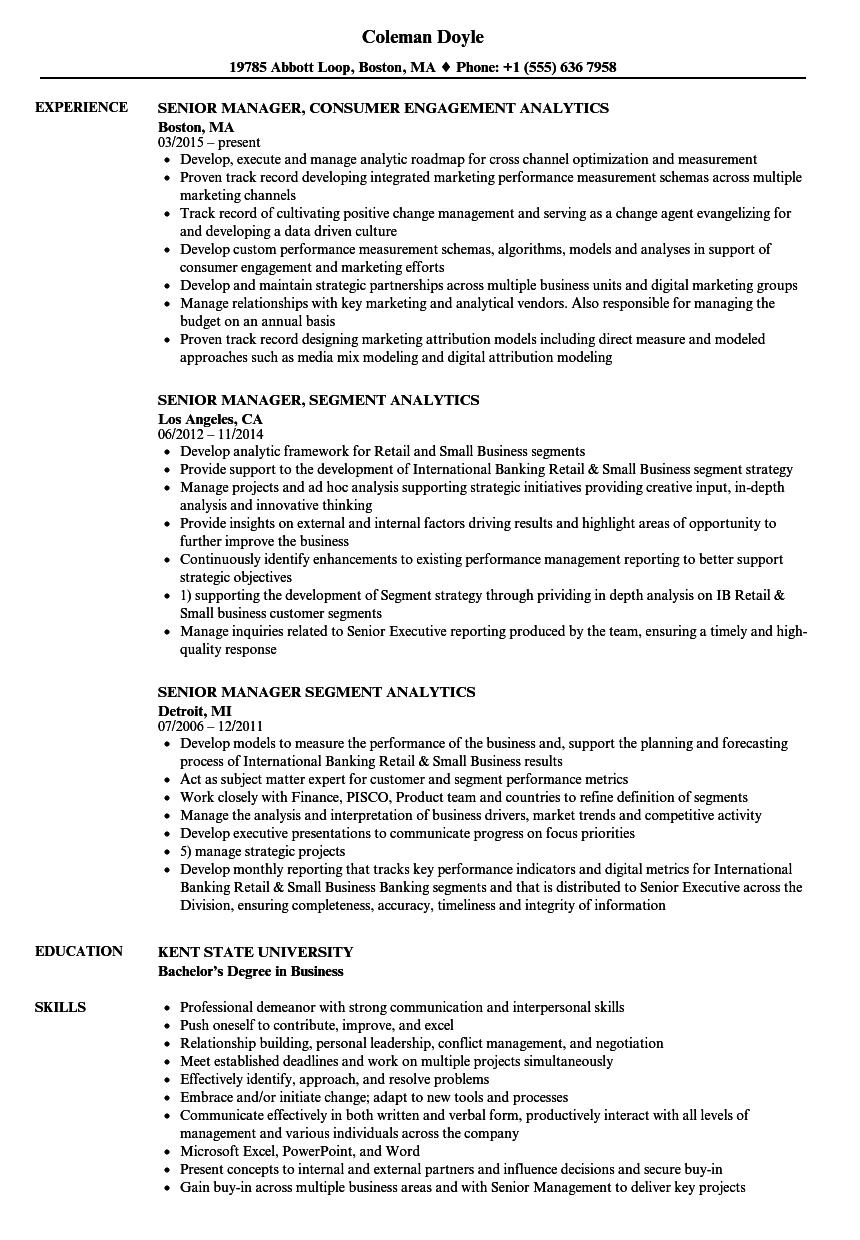Analytics Manager / Senior Analytics Manager Resume Samples | Velvet ...