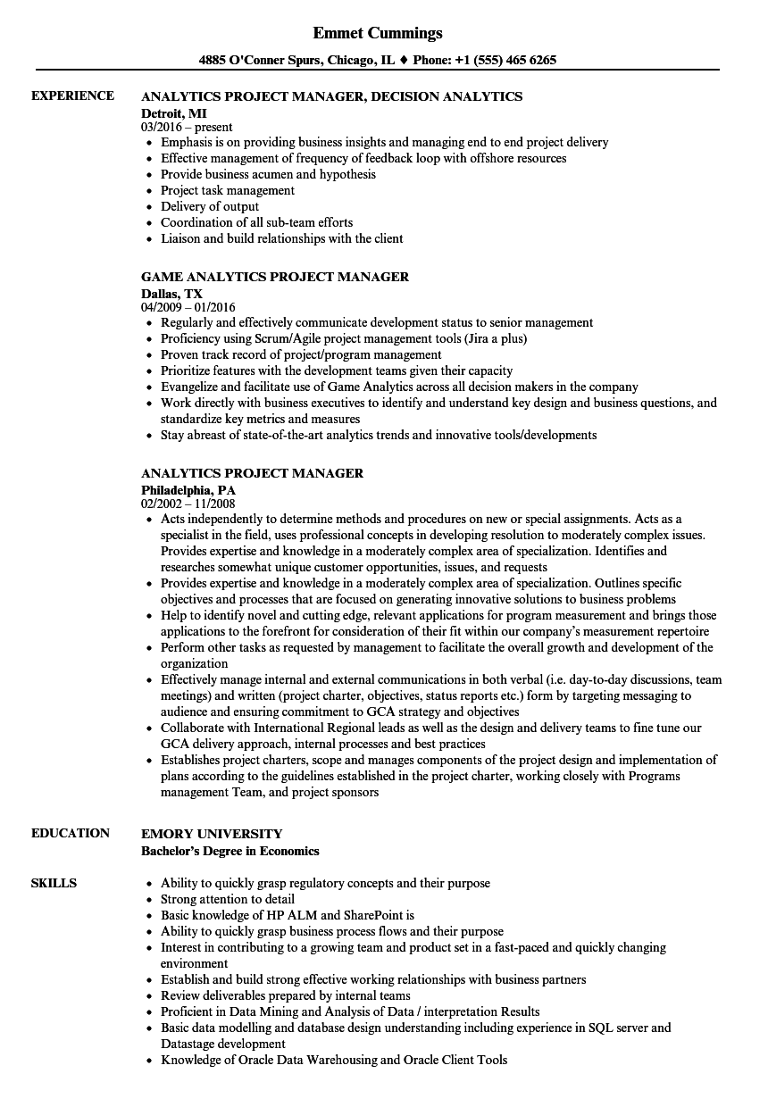 Download Analytics Project Manager Resume Sample As Image File