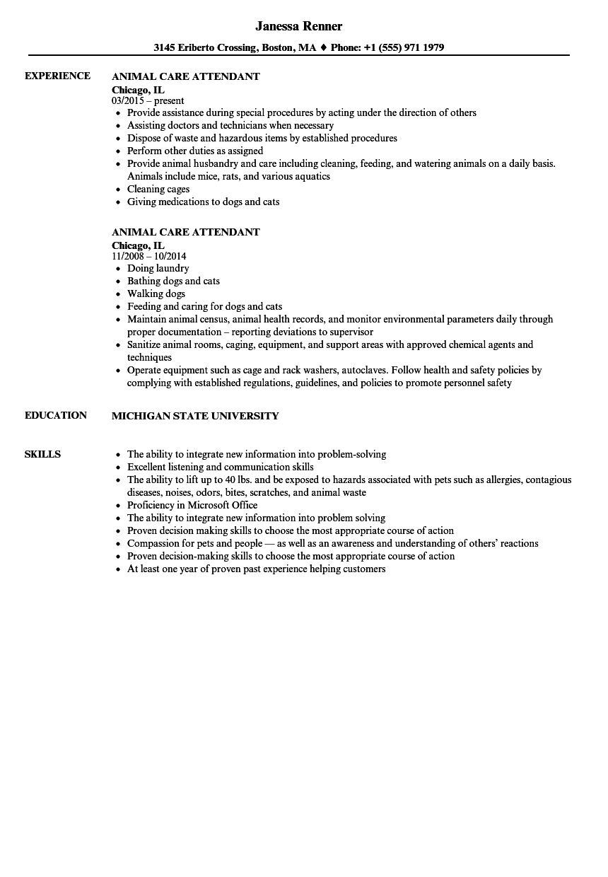 animal care attendant resume samples