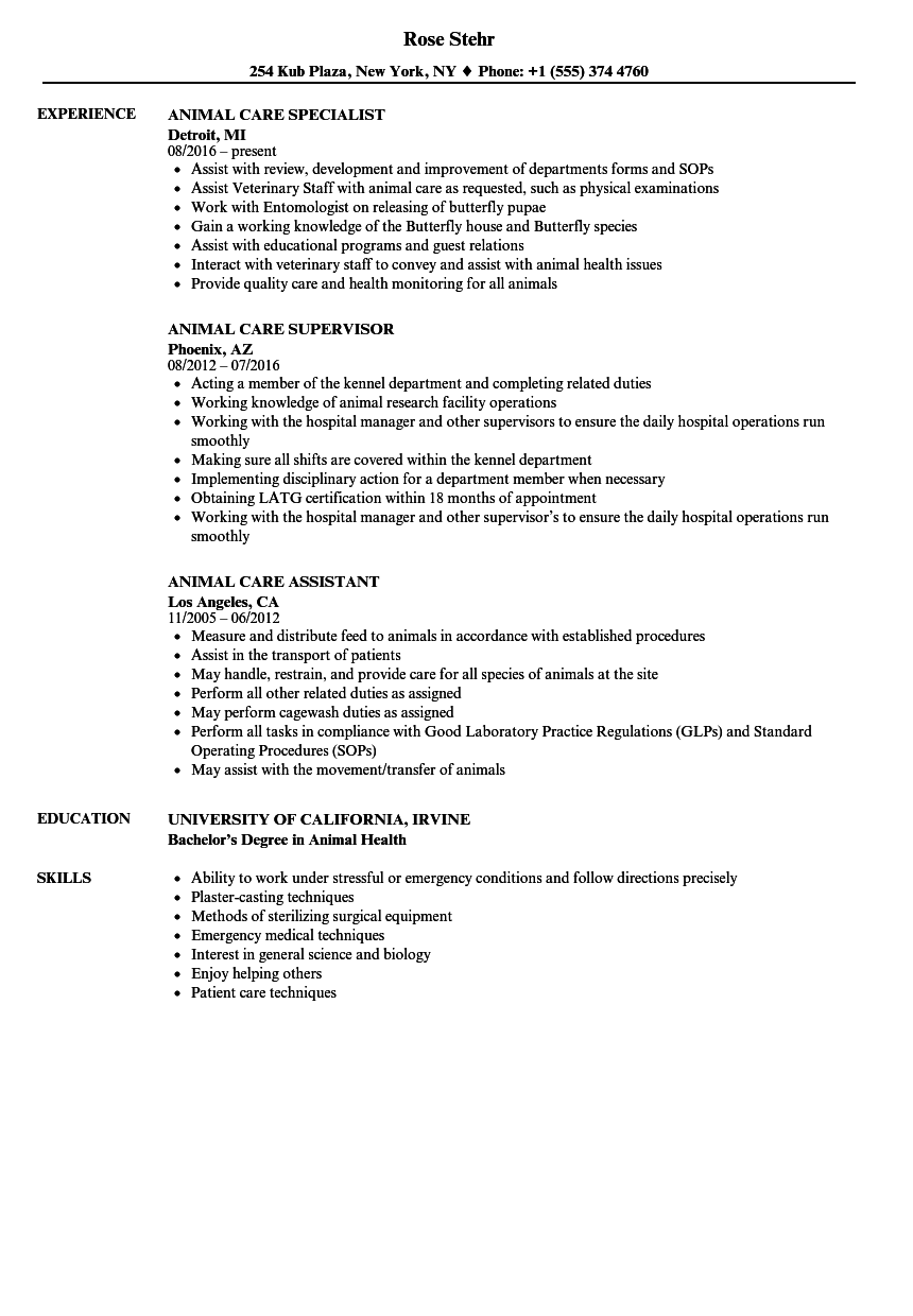 download animal care resume sample as image file