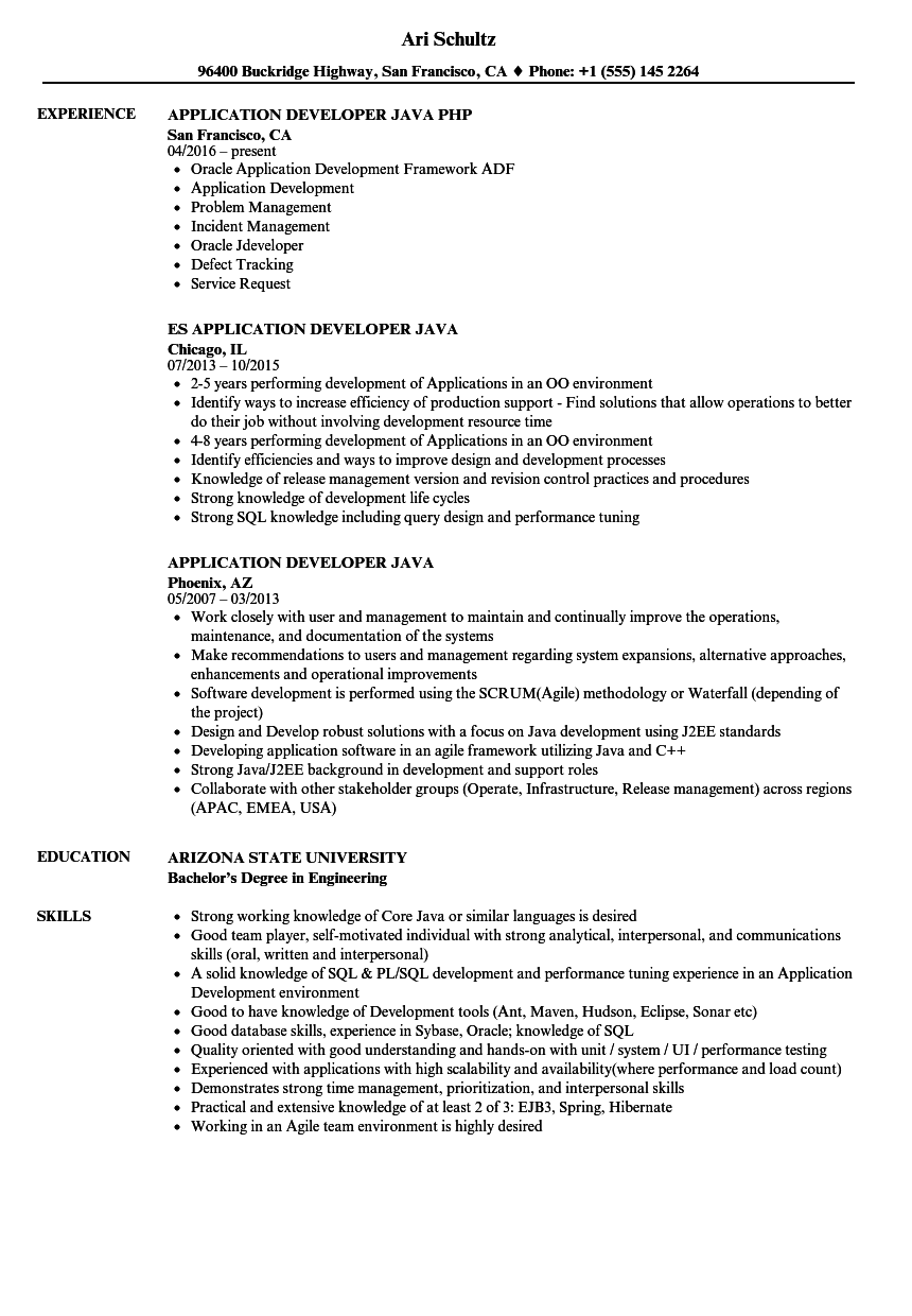 Application Developer Java Resume Samples | Velvet Jobs