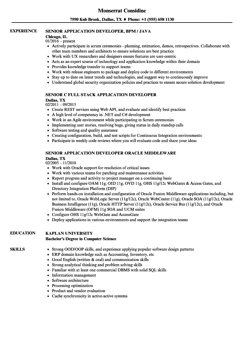 Application Senior Developer Resume Samples | Velvet Jobs