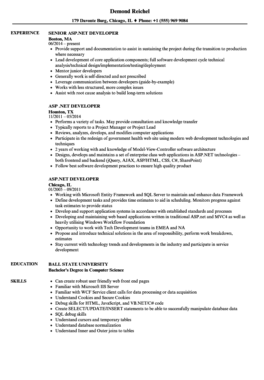 asp net developer resume samples velvet jobs