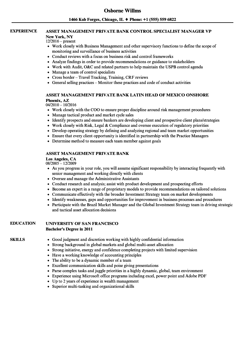 Download Asset Management Private Bank Resume Sample As Image File  Asset Management Resume