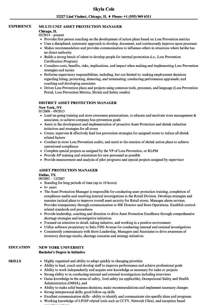 Asset Protection Manager Resume Samples | Velvet Jobs