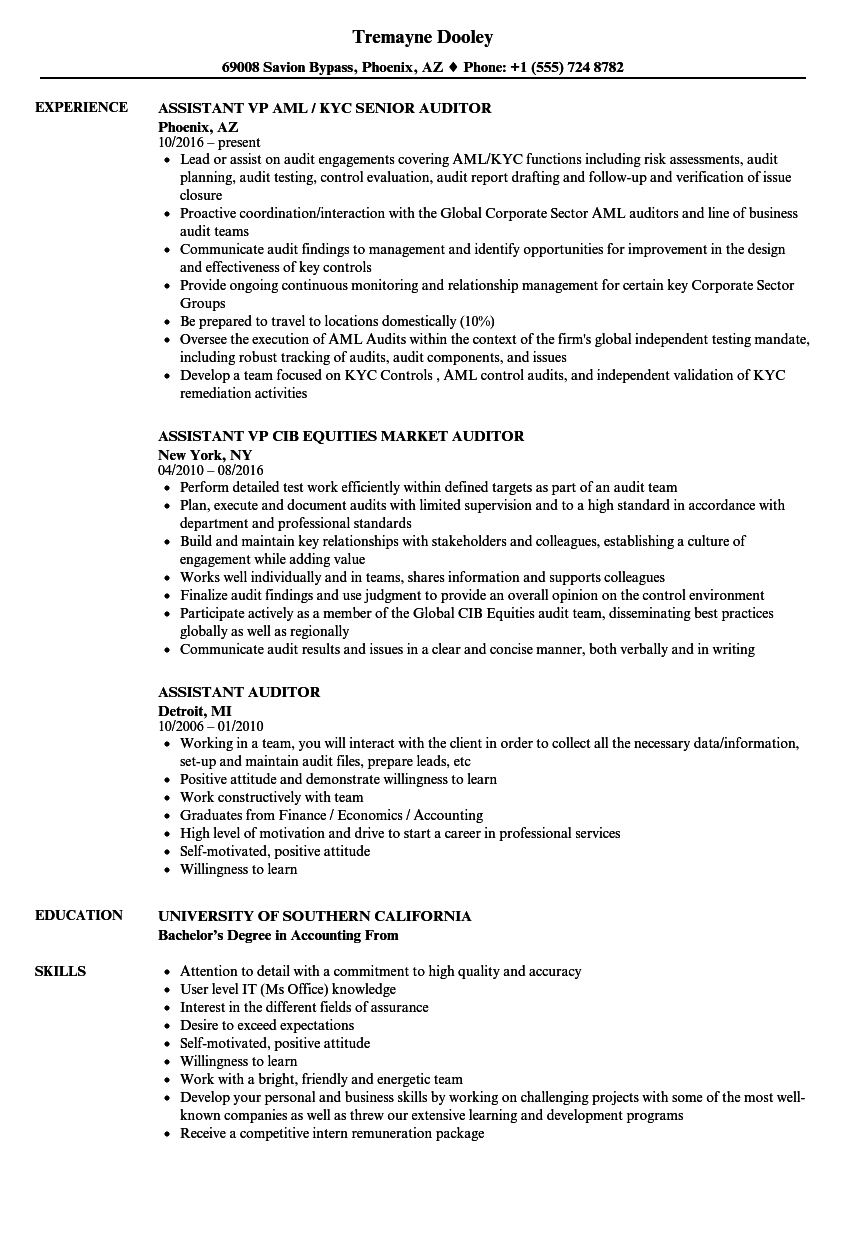 assistant auditor resume samples