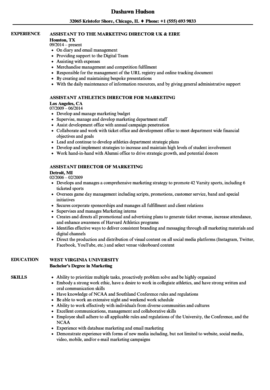 Assistant Director Marketing Resume Samples | Velvet Jobs