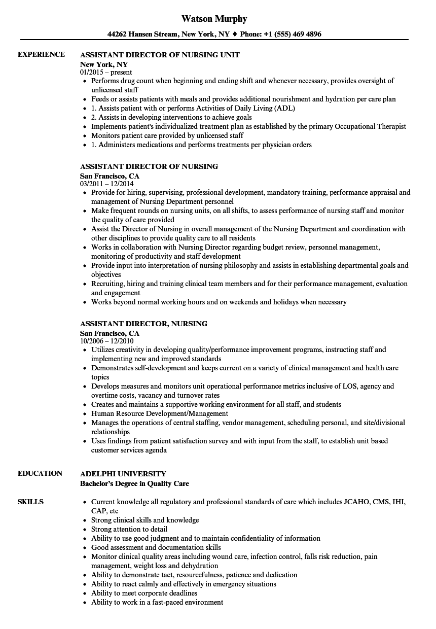 Assistant Director Nursing Resume Samples Velvet Jobs