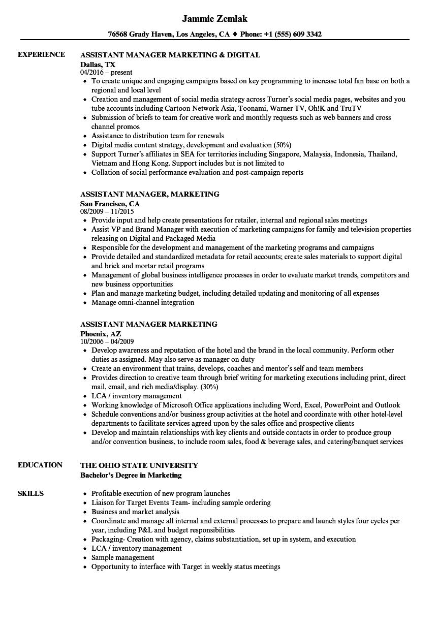 Assistant Manager Marketing Resume Samples Velvet Jobs