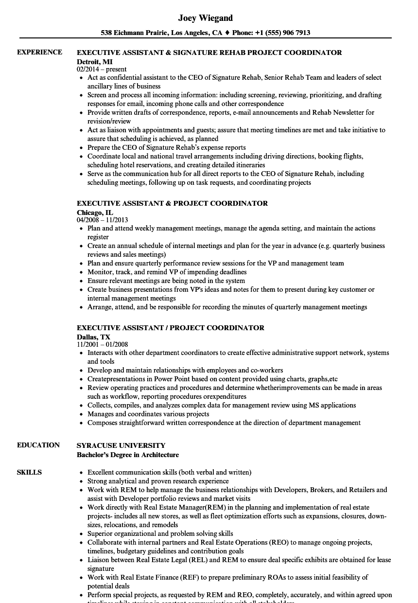assistant project coordinator resume samples