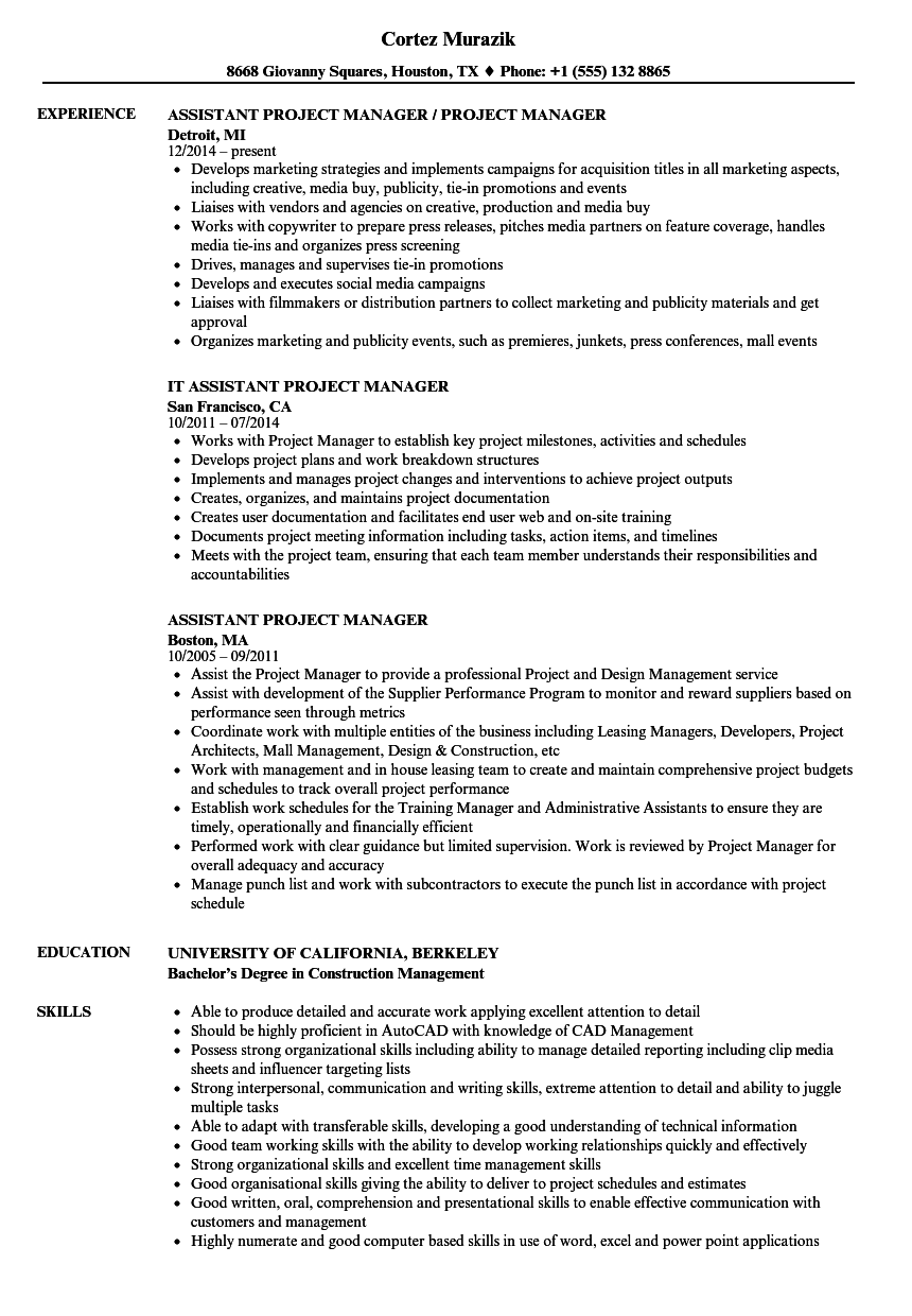 Assistant Project Manager Resume Samples | Velvet Jobs