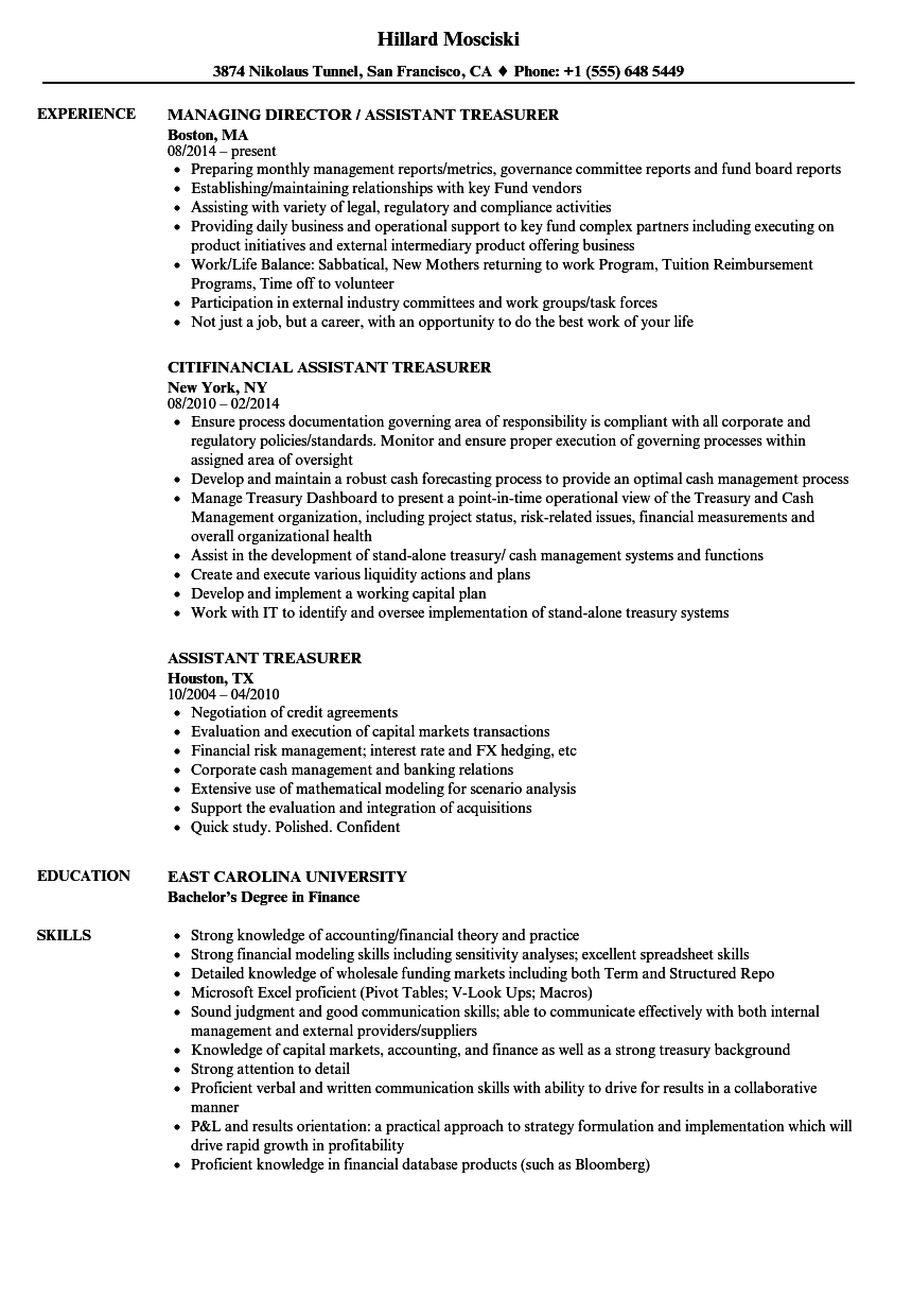 Assistant Treasurer Resume Sample As Image File