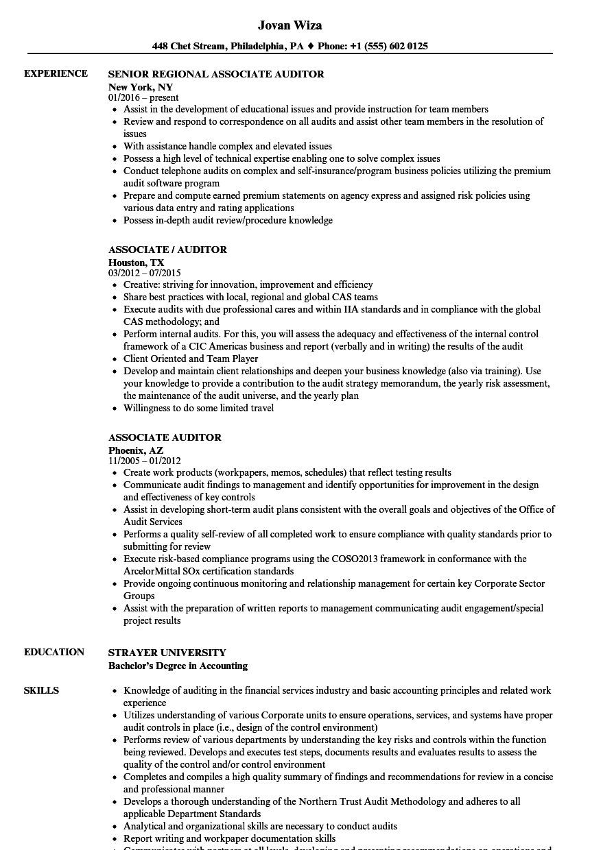 Associate Auditor Resume Samples Velvet Jobs