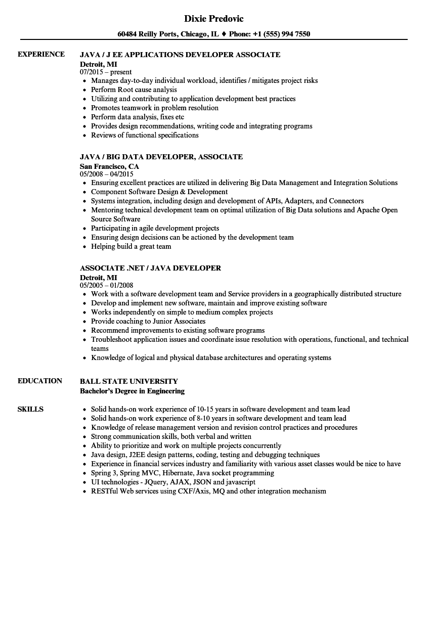 Associate Developer Java Resume Samples Velvet Jobs