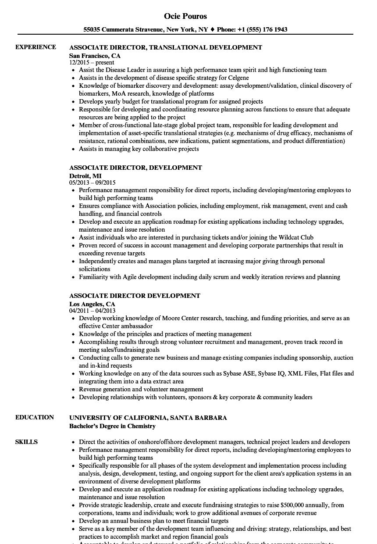 associate director  development resume samples