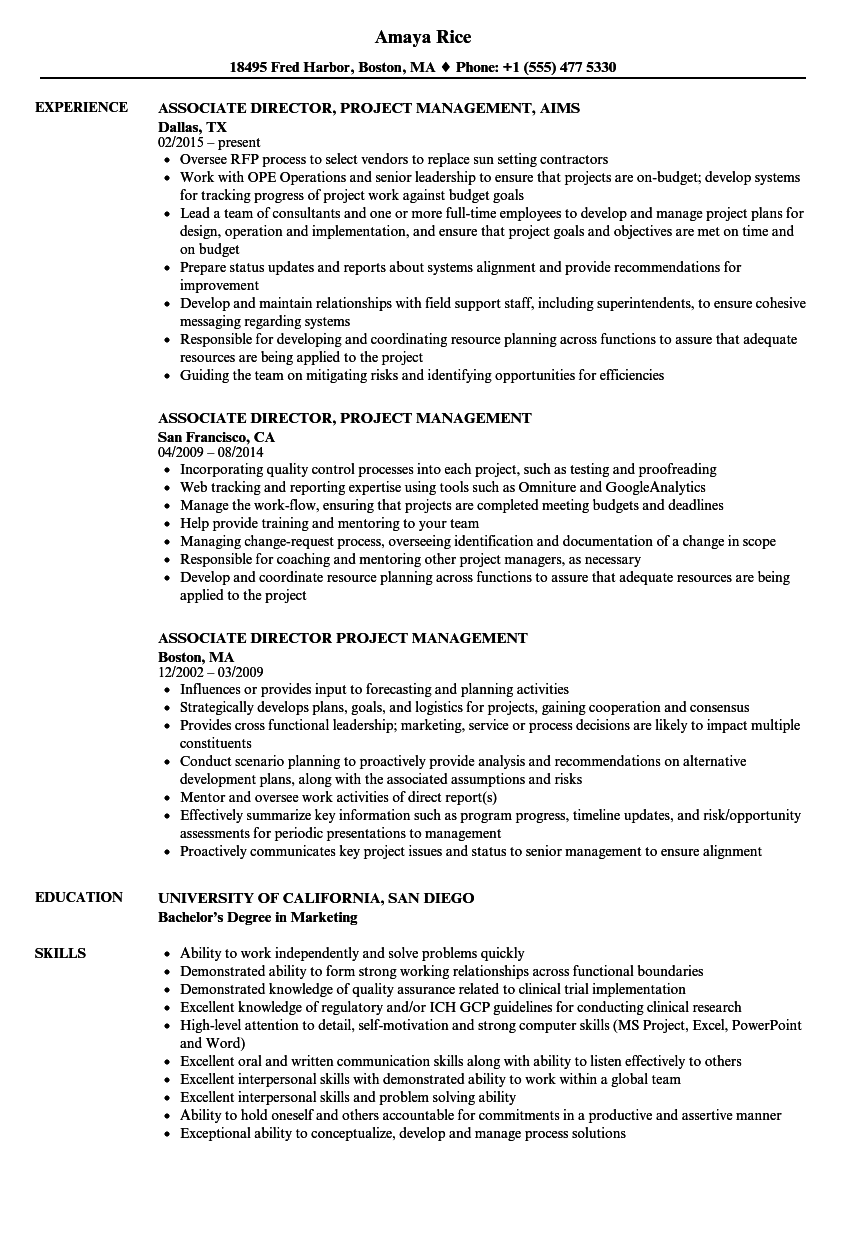 associate director  project management resume samples