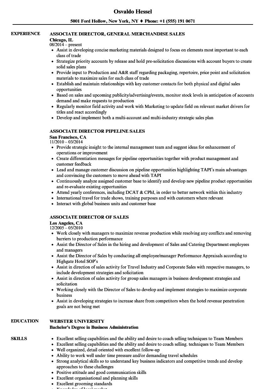 Associate Director / Sales Resume Samples   Velvet Jobs
