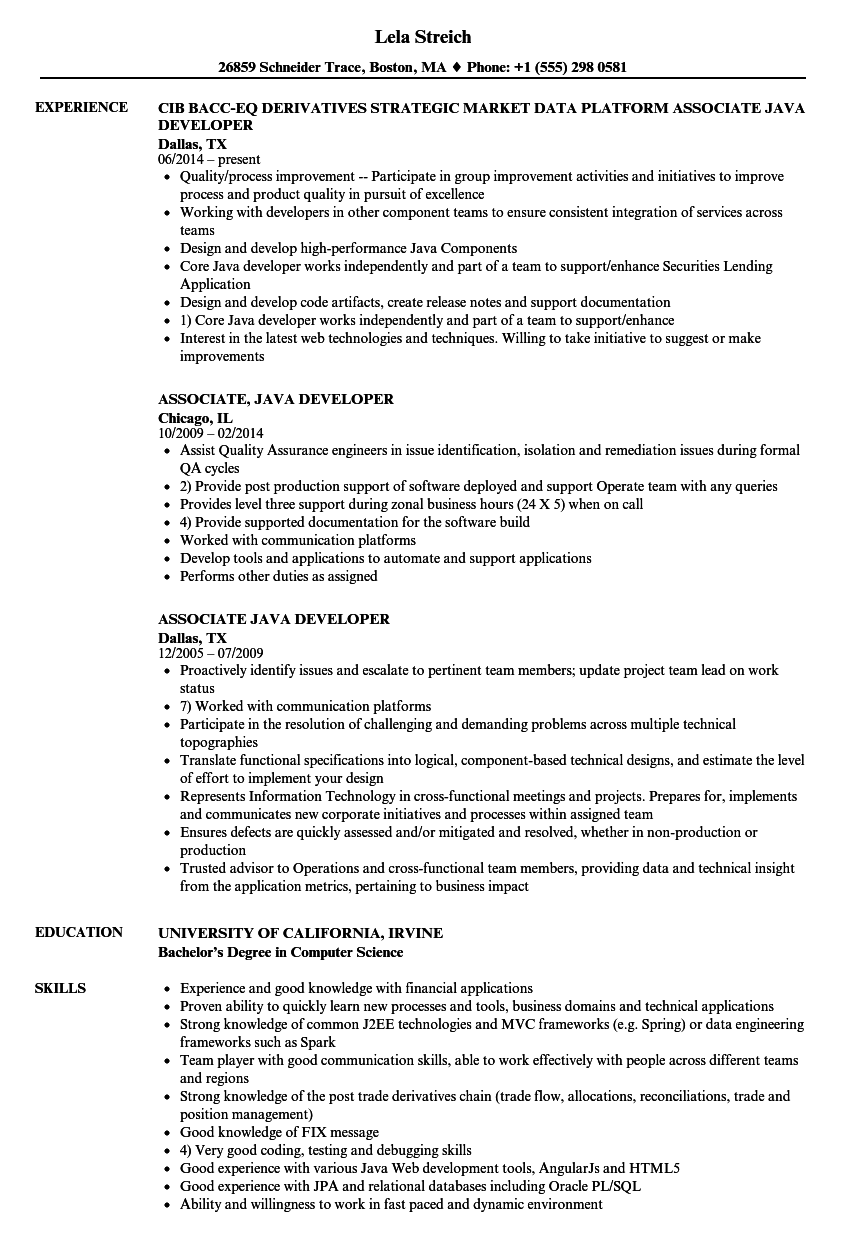 Associate Java Developer Resume Samples | Velvet Jobs