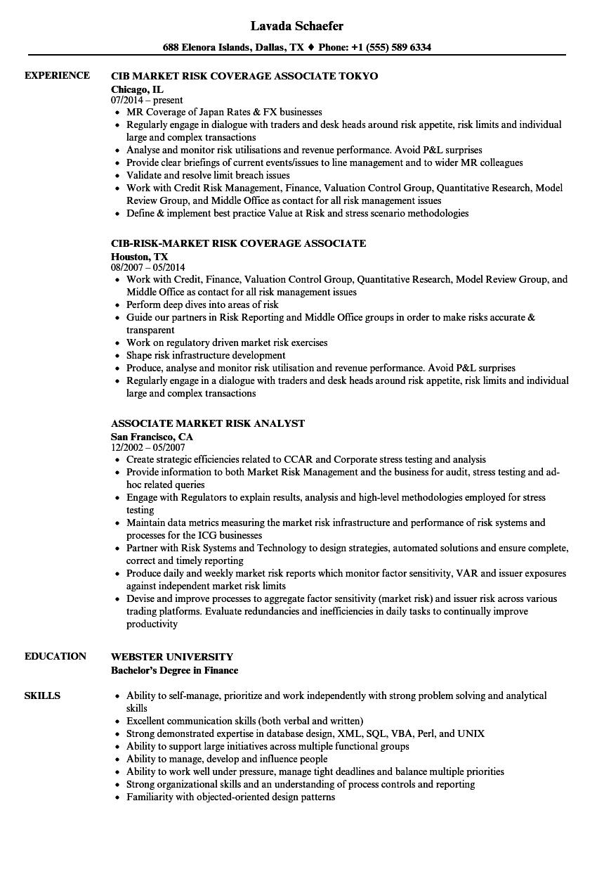 associate market risk resume samples  velvet jobs