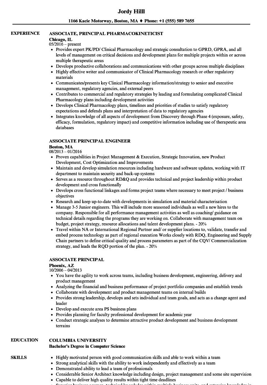 associate principal resume samples