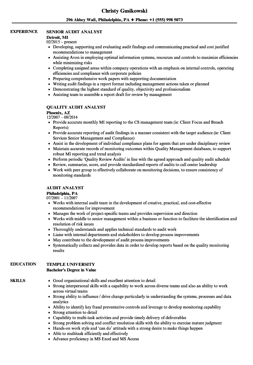 audit analyst resume samples velvet jobs