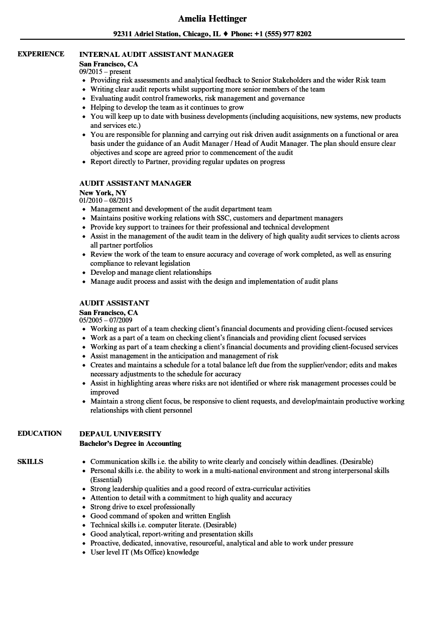 audit assistant resume samples