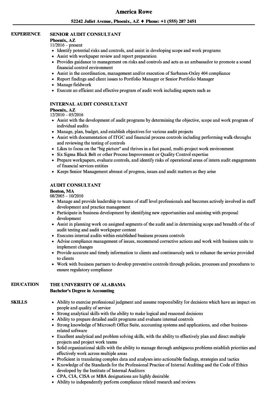 Audit Consultant Resume Samples | Velvet Jobs