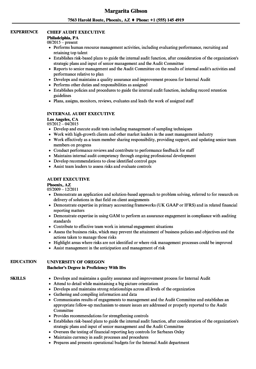 audit executive resume samples