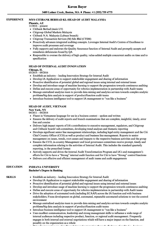 audit head resume samples