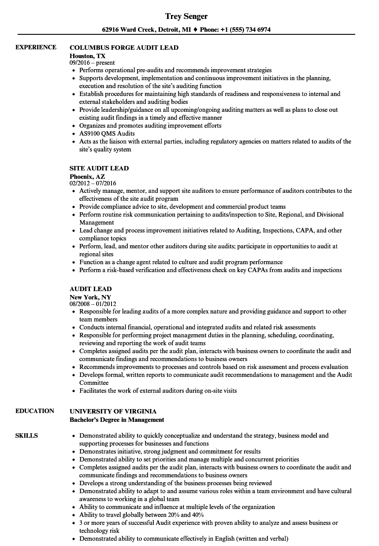 audit lead resume samples