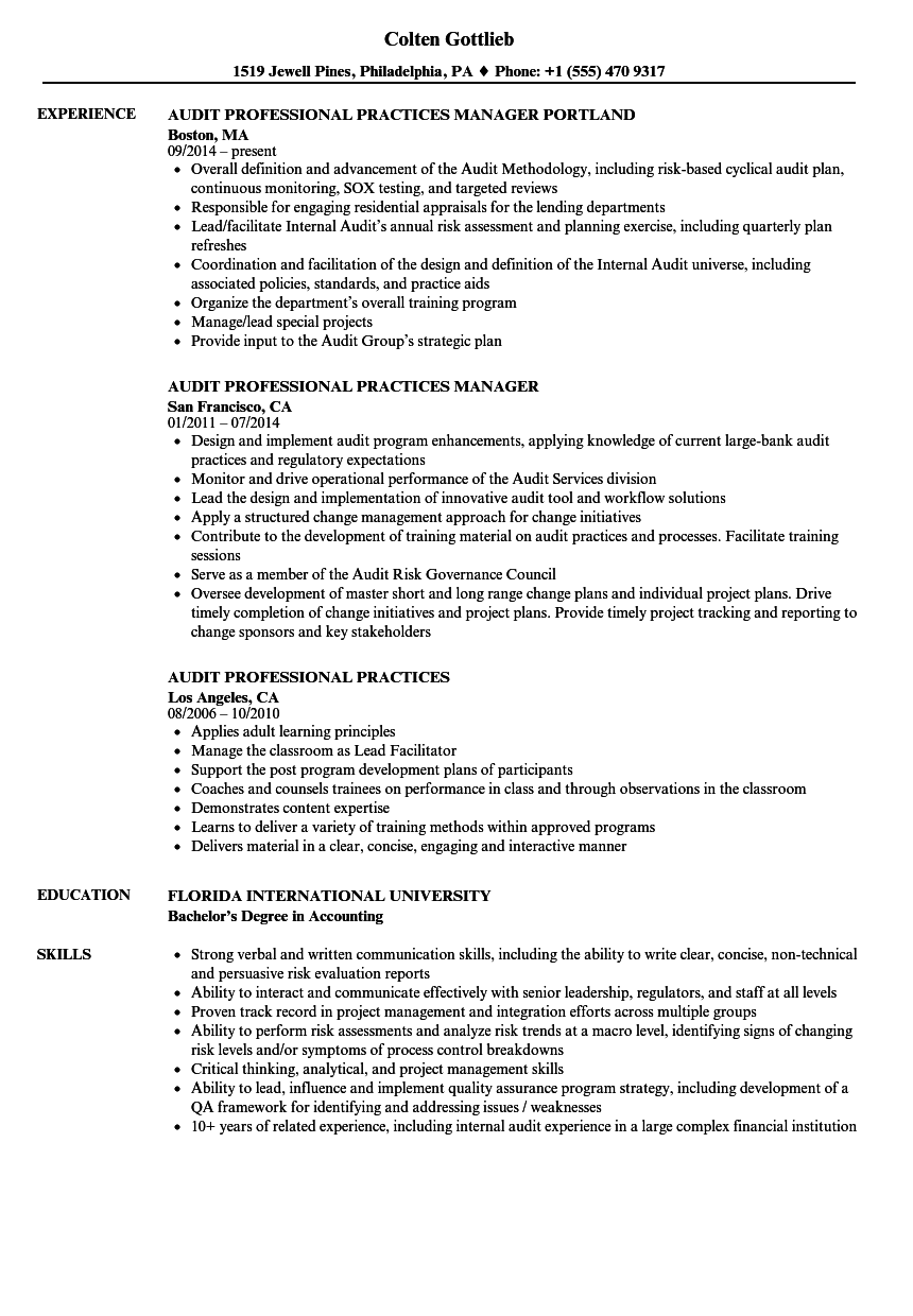 audit professional resume samples velvet jobs
