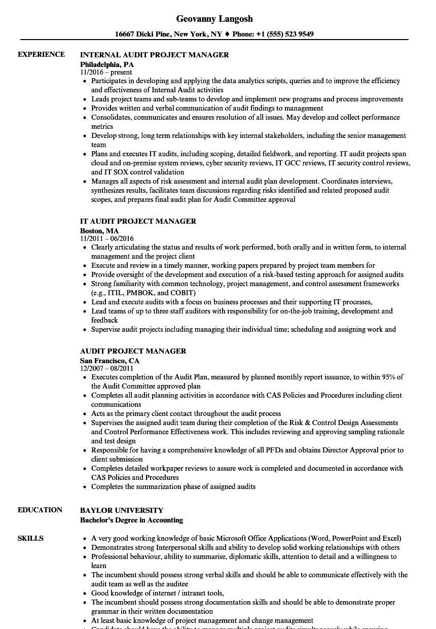 Audit Project Manager Resume Samples | Velvet Jobs