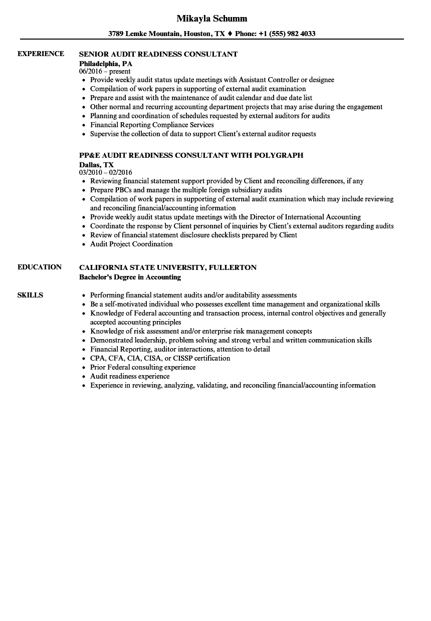 audit readiness consultant resume samples