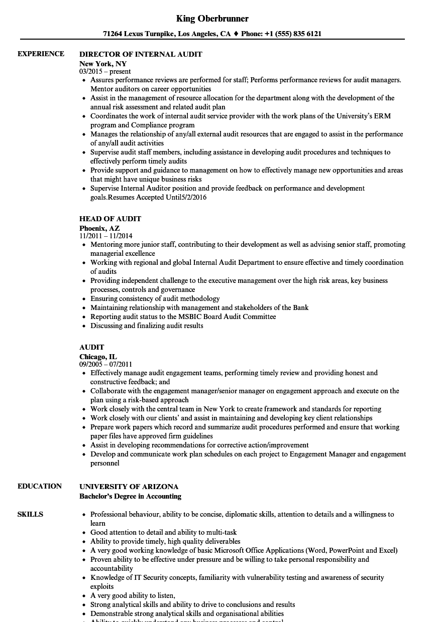 Audit Resume Samples | Velvet Jobs