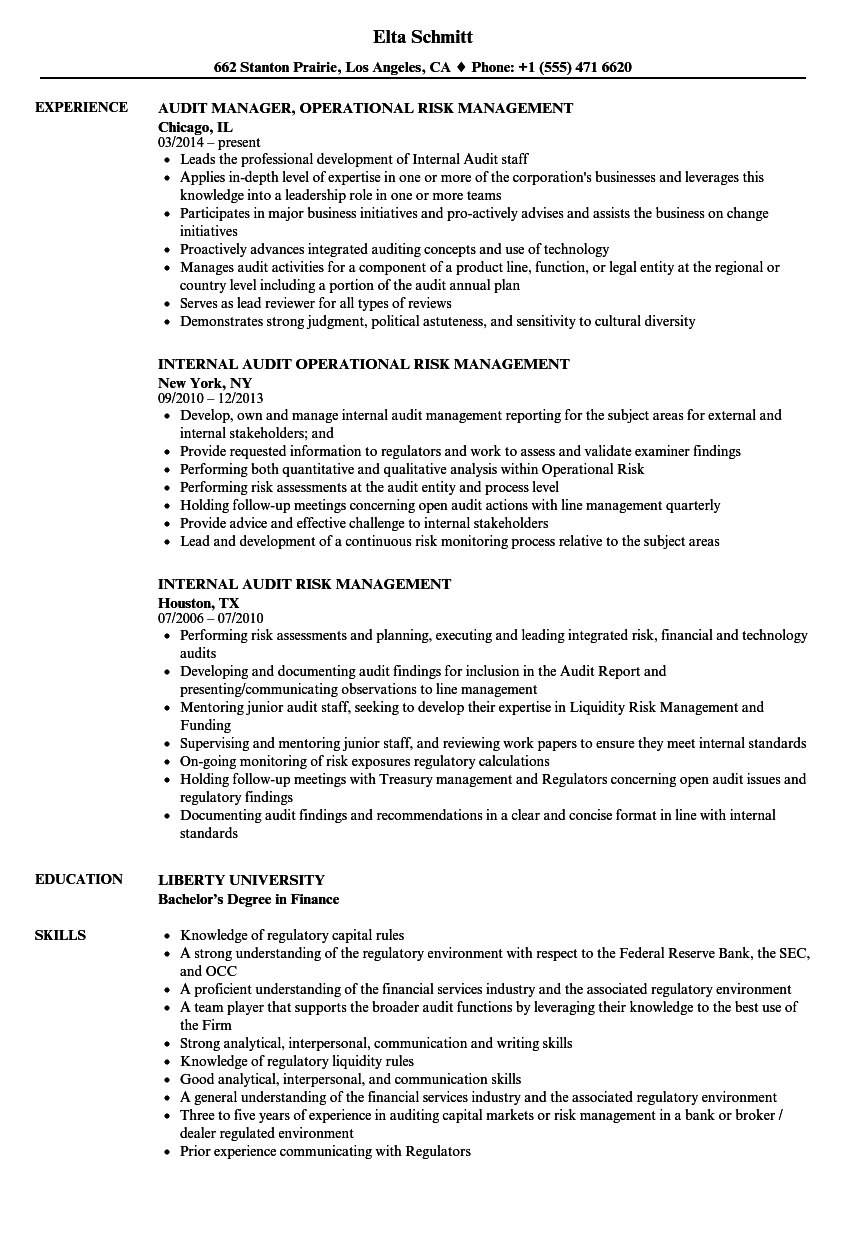 Audit & Risk Management Resume Samples | Velvet Jobs